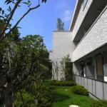 敷地の南側・西側には大きな木々が屋敷を取り囲んでいた。そうした木々を残し、移植しながら入居者にも緑を楽しんでもらい、そして3Fの屋上緑化との繋がりをもたせた。