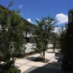 中庭(シンボルツリー:ヤマボウシ)の連続性と光と風