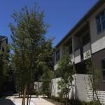中庭のシンボルツリーとプライベートバルコニーの距離感と高さが心地良い