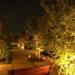 「杜」の夜景を幻想的にライトアップ…