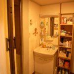 (旧)お風呂脇の洗面所